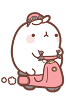 Molang transparent cute. Welcome to the wiki