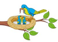 Mom clipart bird. Search results for mother
