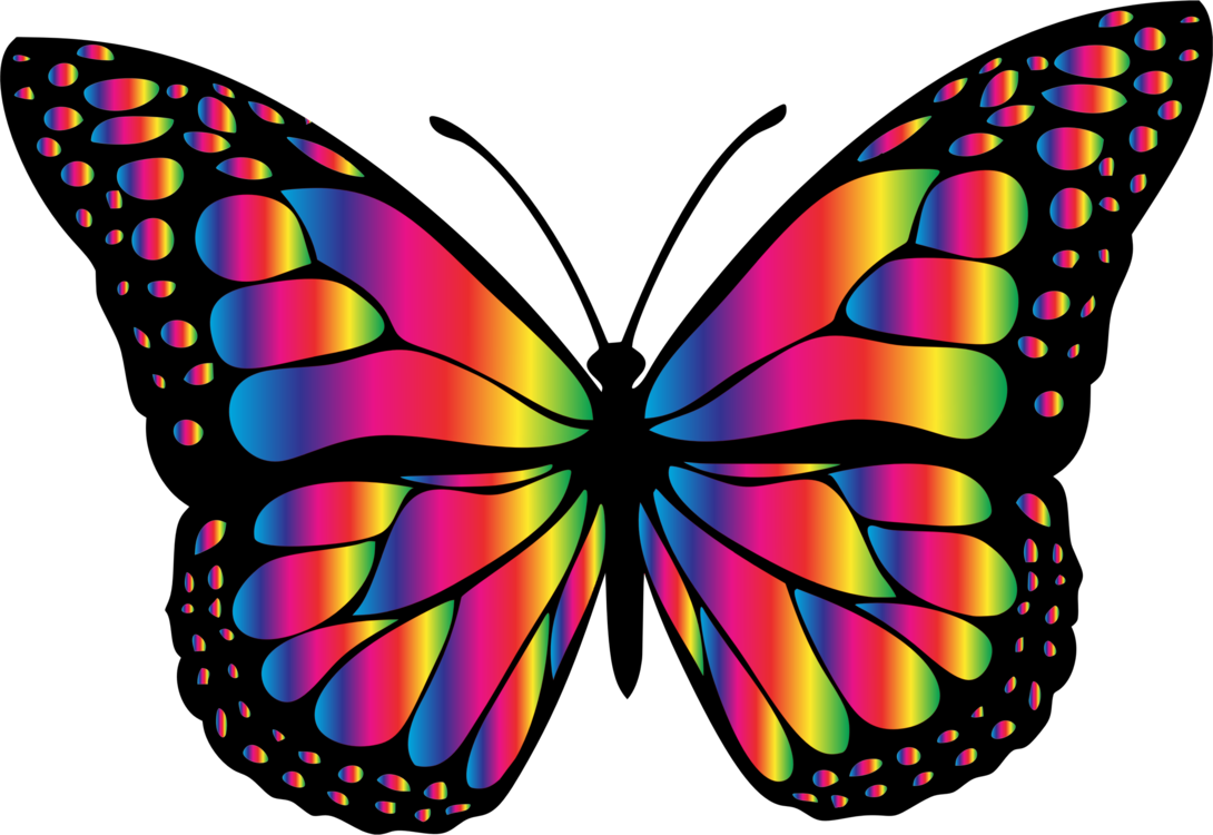 Animal clipart butterfly. Monarch insect chrissy s
