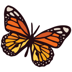 Monarch clipart svg. Butterfly my miss kate