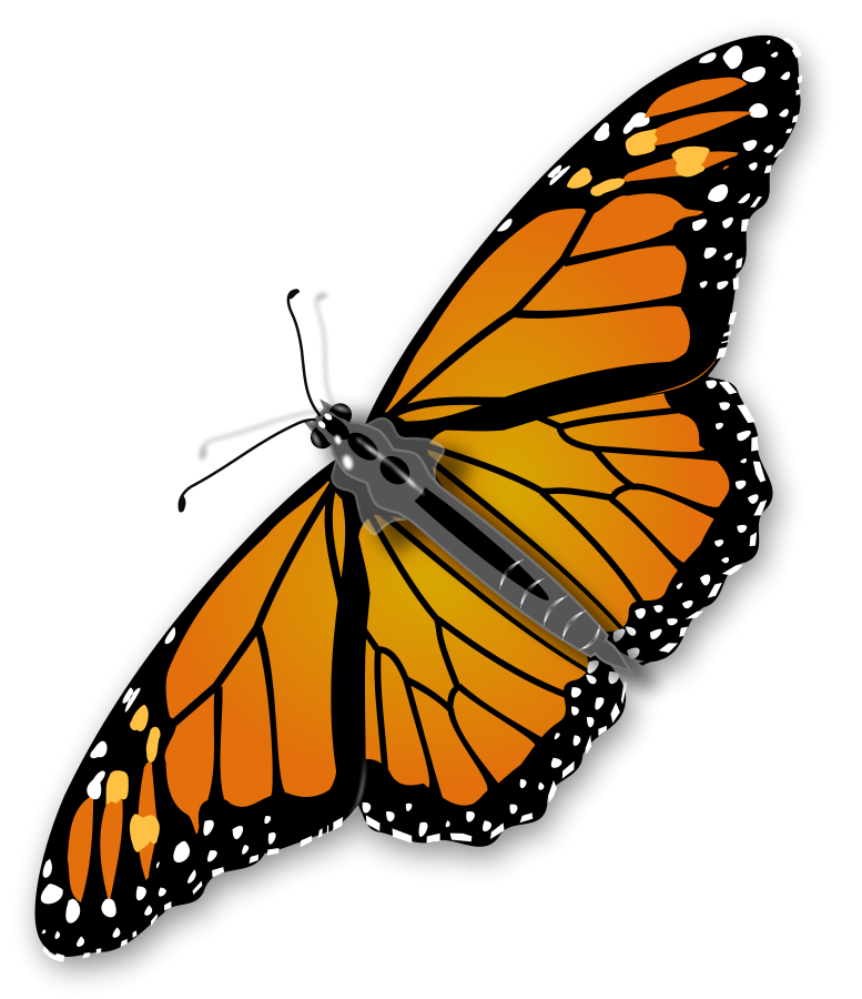 Monarch clipart svg. Titlis clipground cartoon butterfly