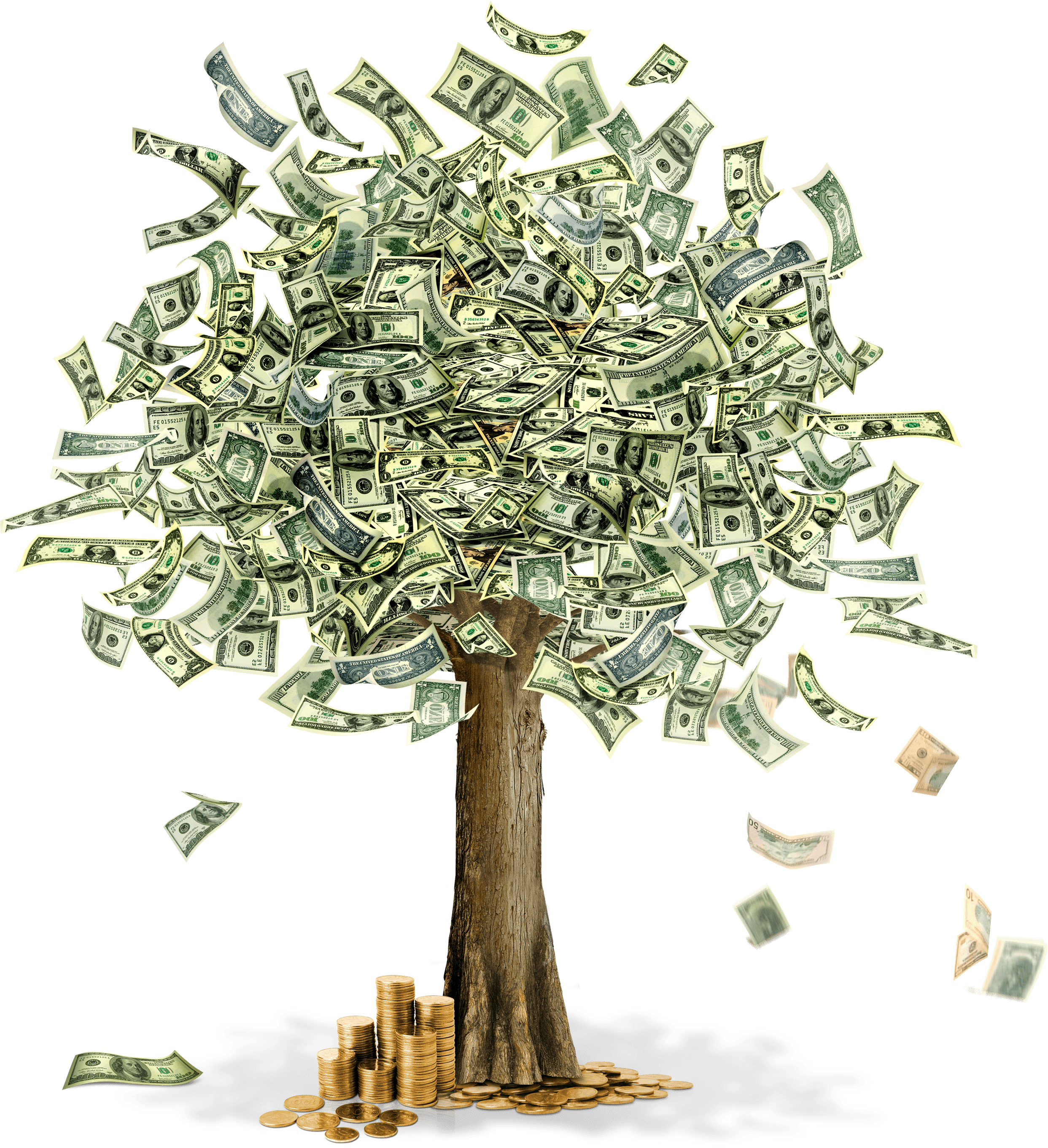 Money falling alpha png. Tree transparent stickpng
