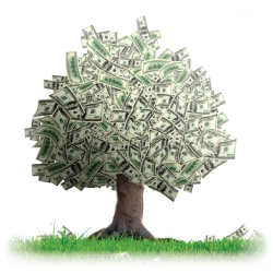 Money tree png. Images in collection page