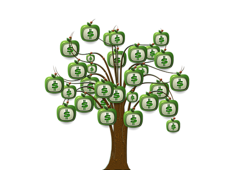 Money tree png. Sls financial services