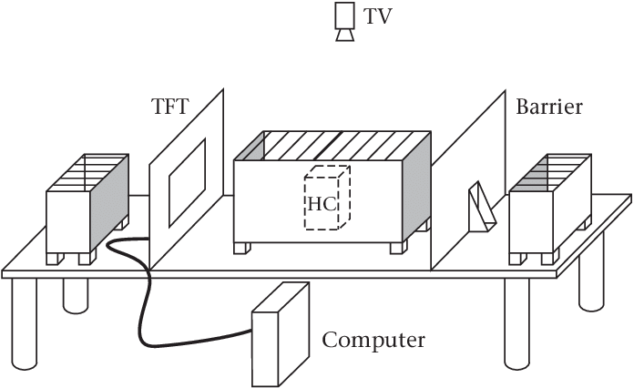 Monitor drawing video art. Illustration of the apparatus