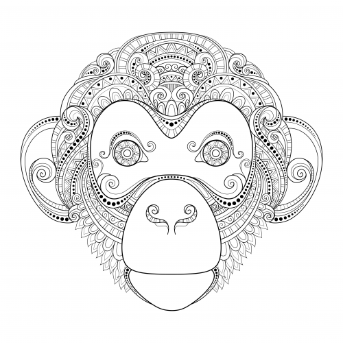 Monkey coloring for grown ups. Advanced page animal pages