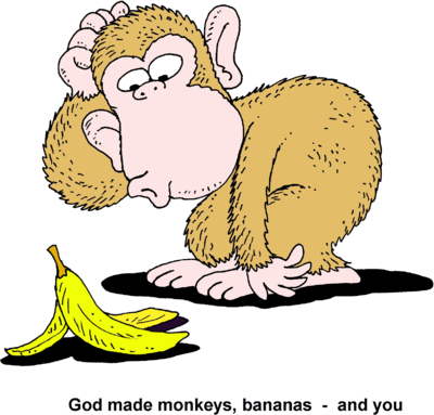 Monkeys eating bananas clipart png. Image silly monkey god