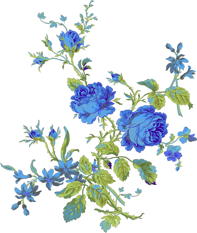 Delphinium drawing victorian flower. Png art floral