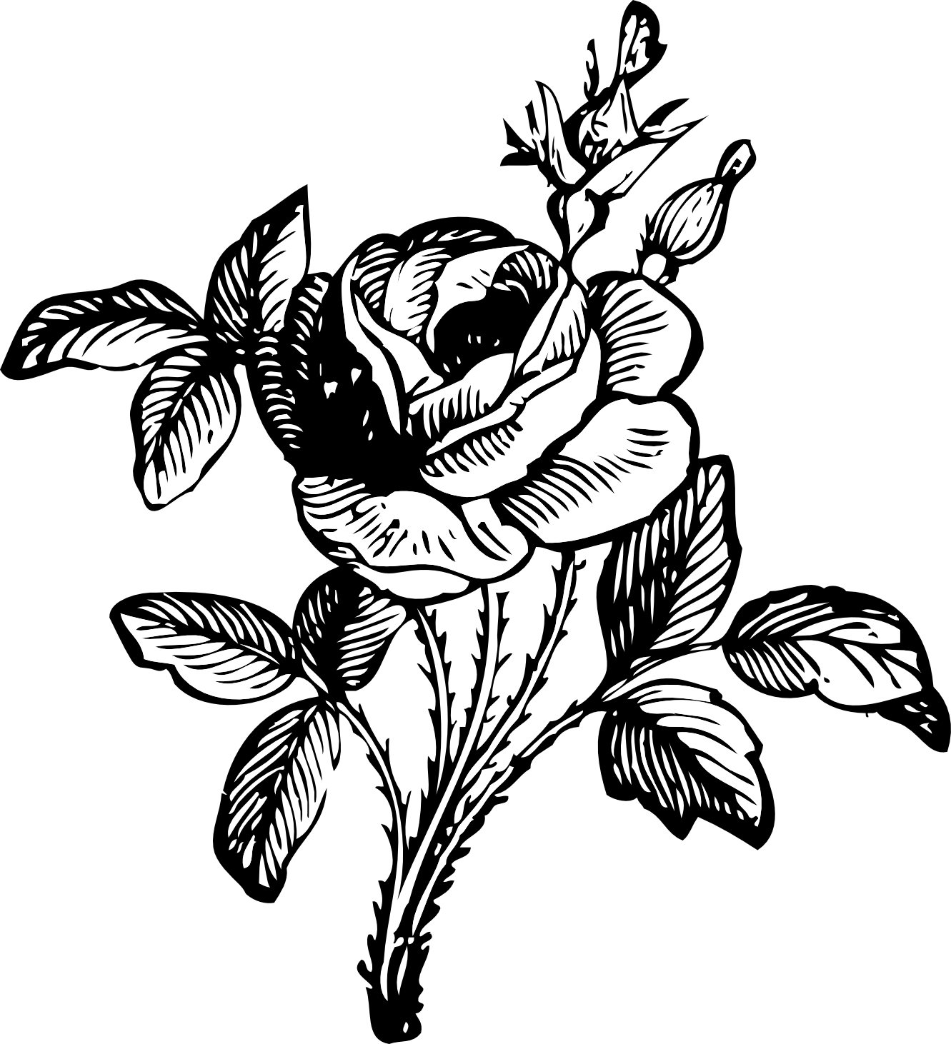 Monochrome drawing. Black and white rose