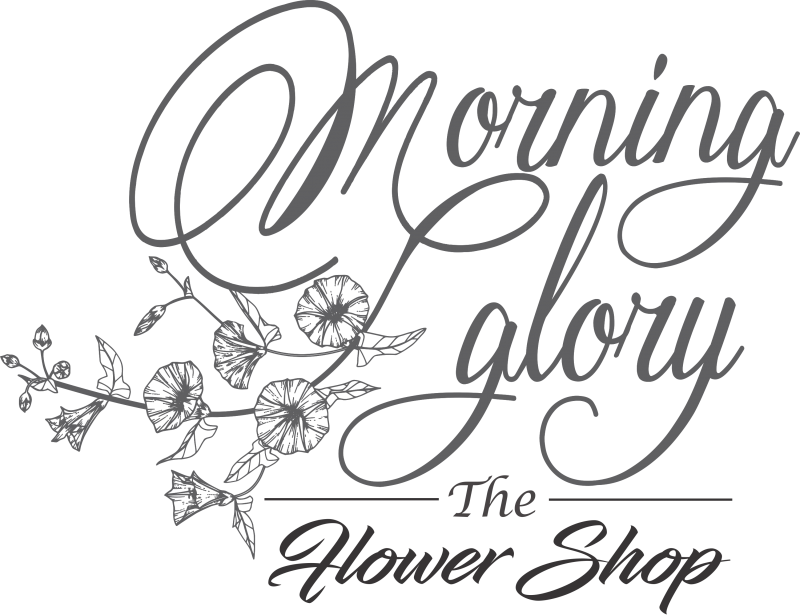 Morning drawing flower. Roses minco florist glory