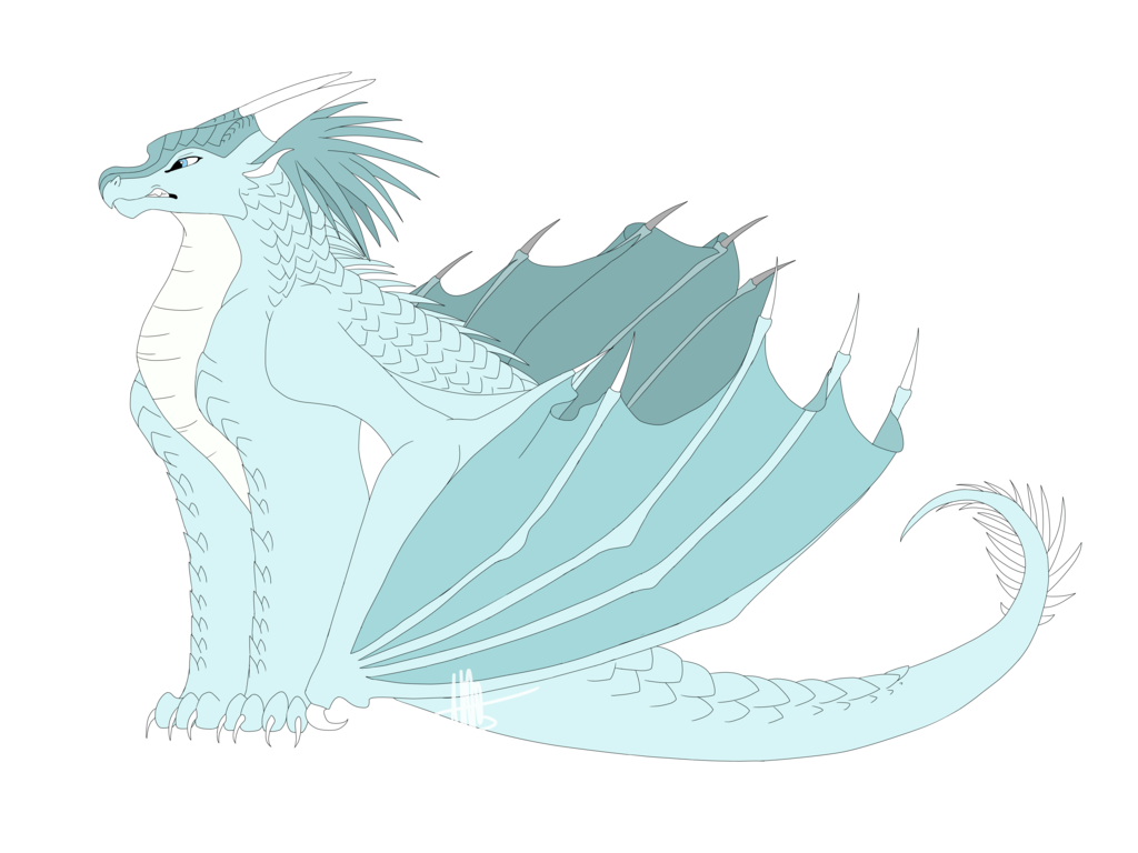 Morning drawing winter. Wings of fire by