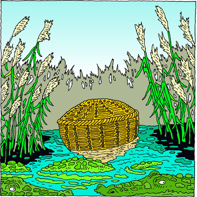 Moses clipart basket. Image she took for