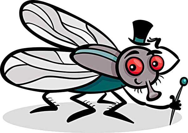 Mosquito clip comic. Insect housefly coloring book