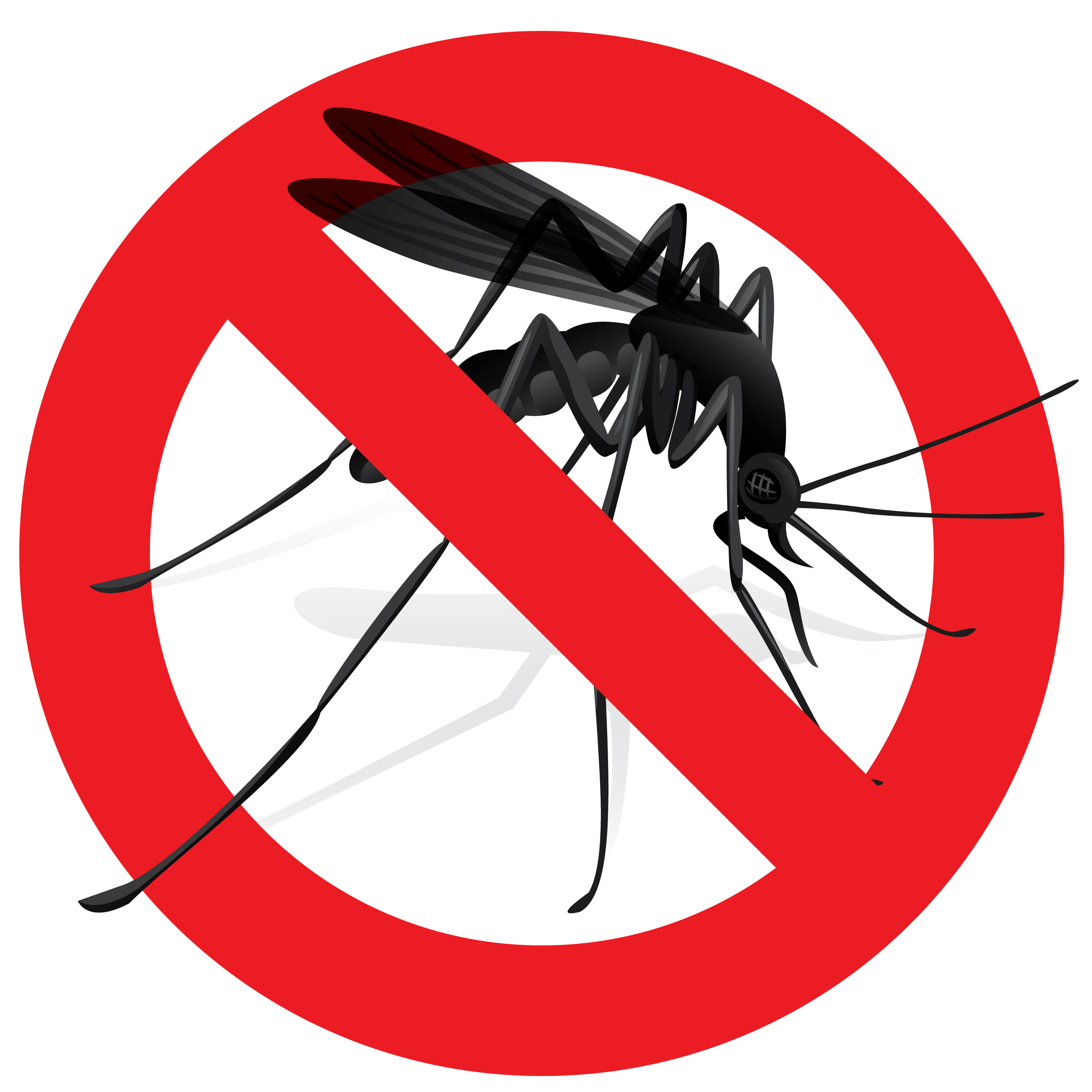Mosquito clipart heartworm. Prevention and treatment of