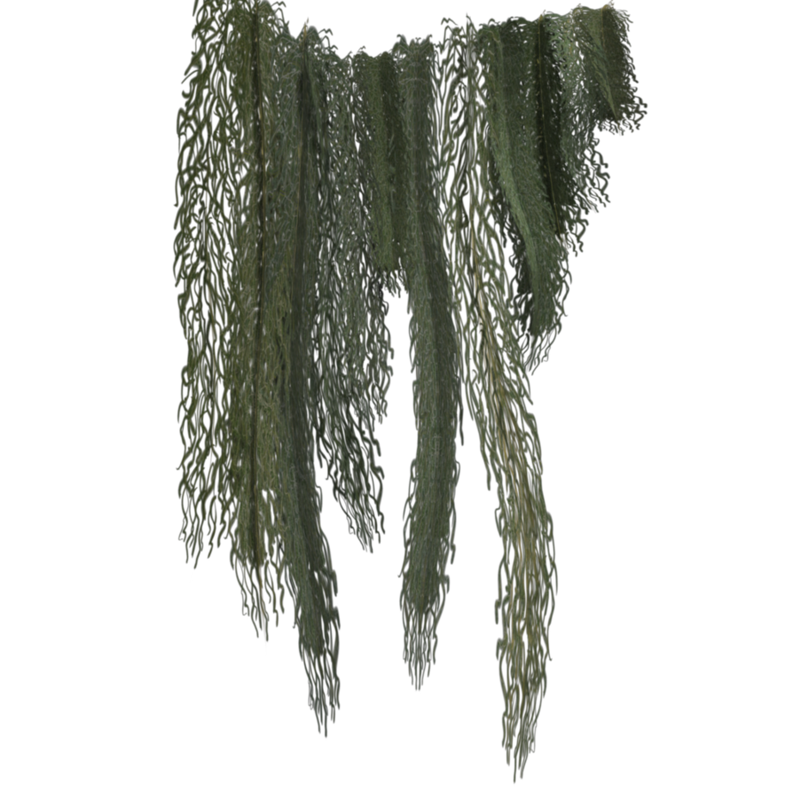 Moss png. By cimarron on deviantart