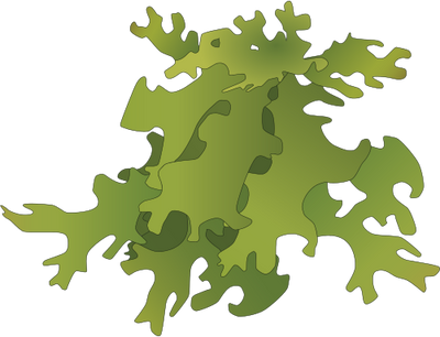 Moss vector craft. Index of ress tice