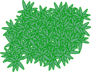 Moss vector illustration. Clipart