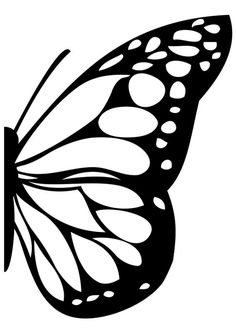 Moth clipart closed wing. Butterfly wings drawing at