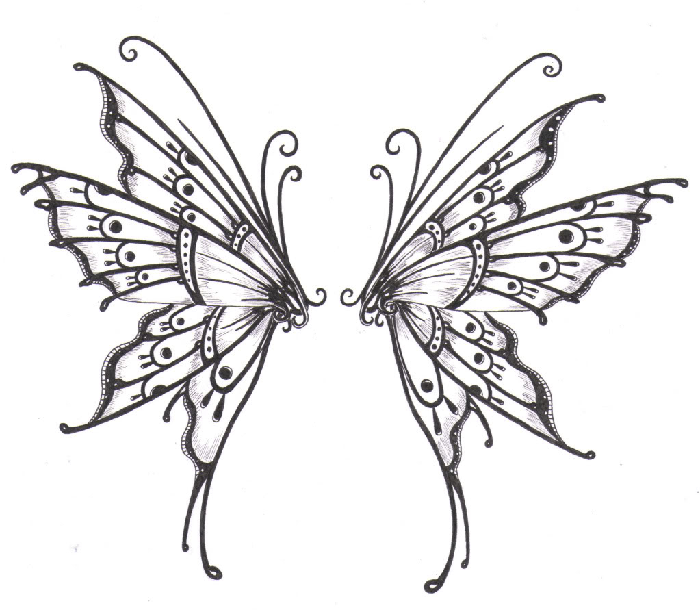 Moth clipart closed wing. Wings line drawing at
