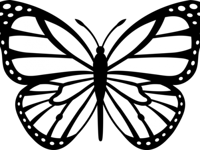 Sharpener clipart black and white. Free butterfly drawings download