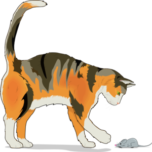 Mouse clip prey. Cat with art at