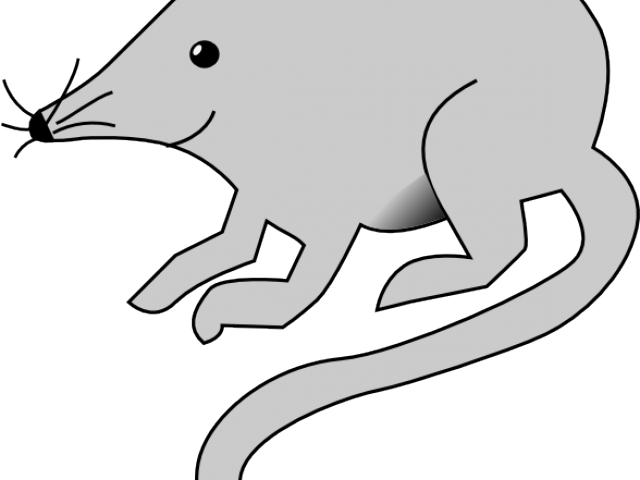 Mouse clip rat. Cat and vector library