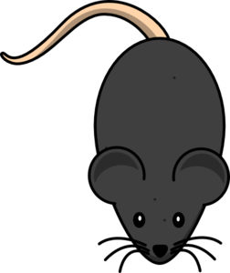 Mouse clipart rodent. Mice pencil and in
