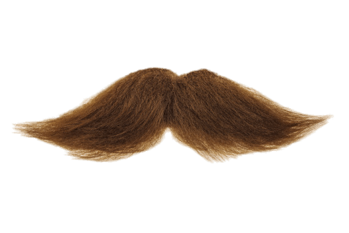 Moustache png transparent. Mustache brown stickpng people