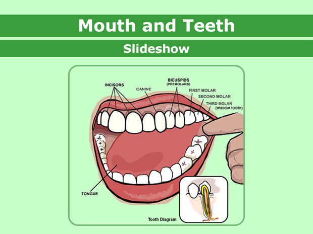 Mouth clipart clean mouth. Mouthandteeth enss jpg whats
