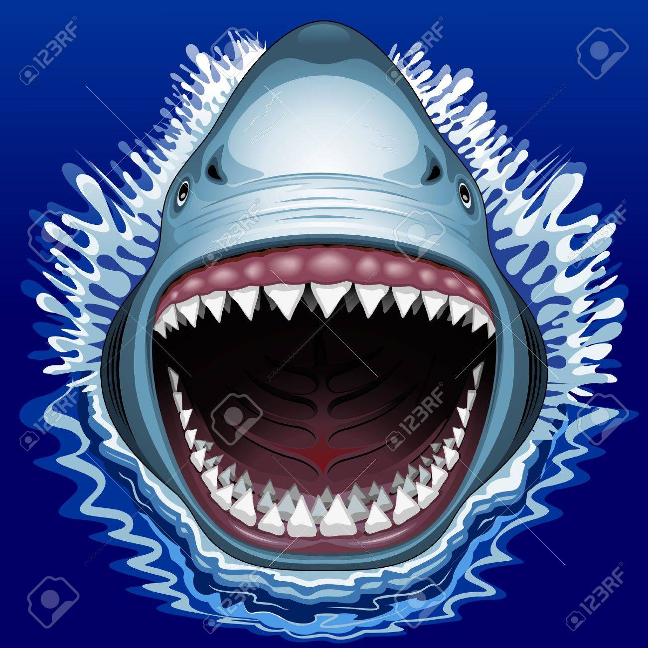 Mouth clipart jaw. Shark drawing at getdrawings