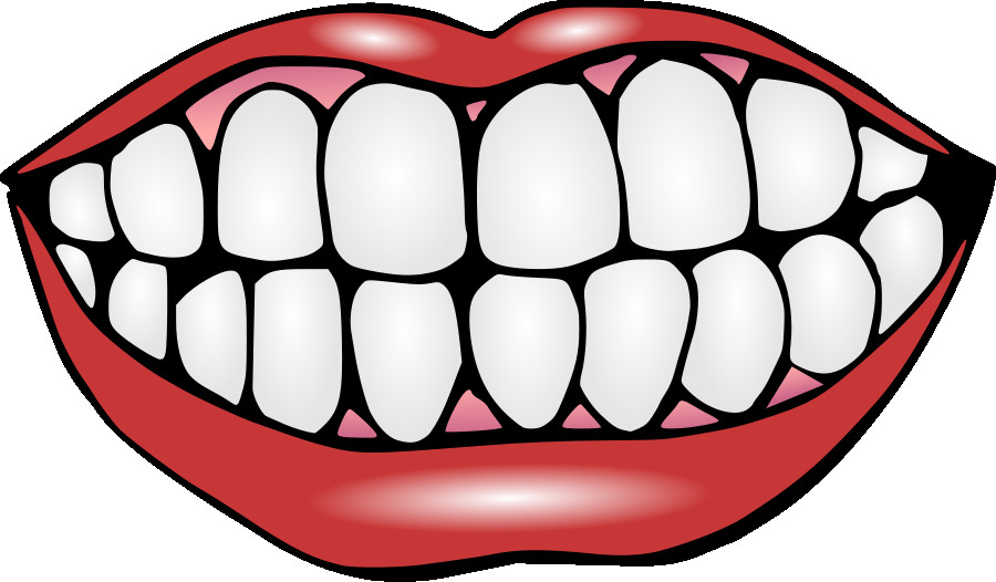 Mouth clipart jaw. With teeth free panda