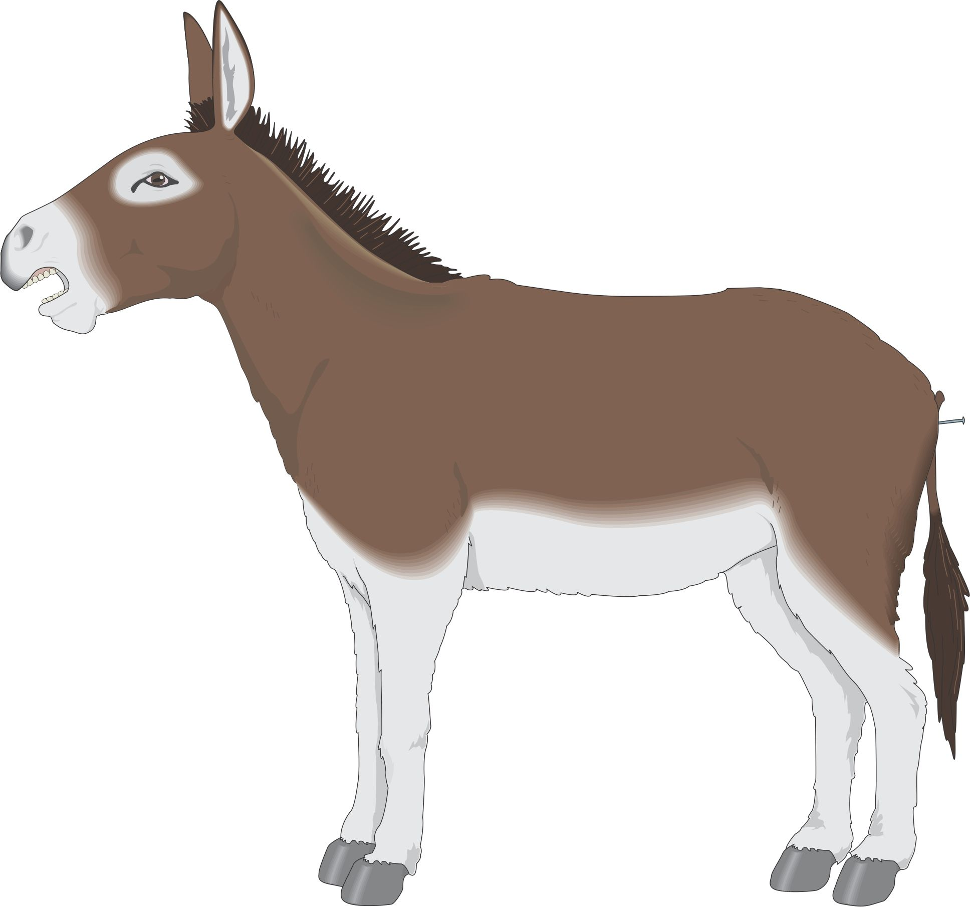 Mule clipart clip art. Cartoon back to from