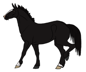Mule clipart horse tooth. Last chance breedings dirt