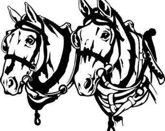 Mule clipart horse tooth. Best images on