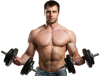Transparent muscles gym. Online personal training body