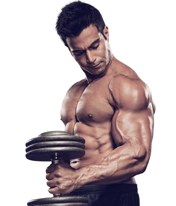 Transparent muscles gym. Dietary supplement bodybuilding muscle