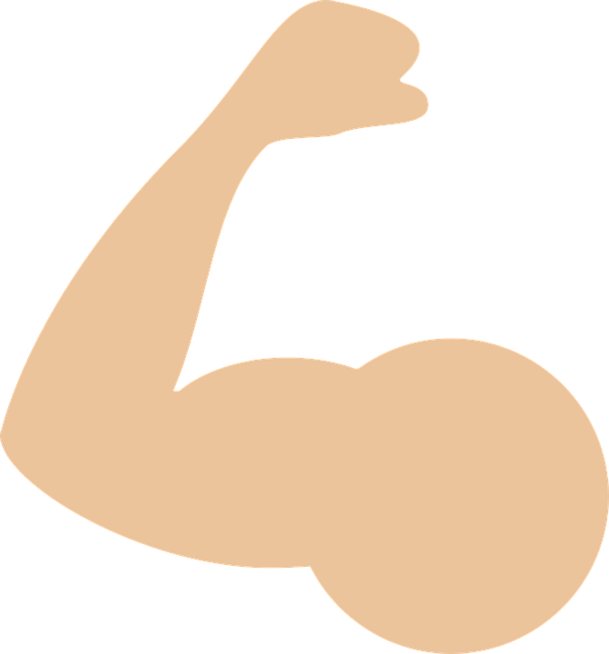 Muscle arms png. Image