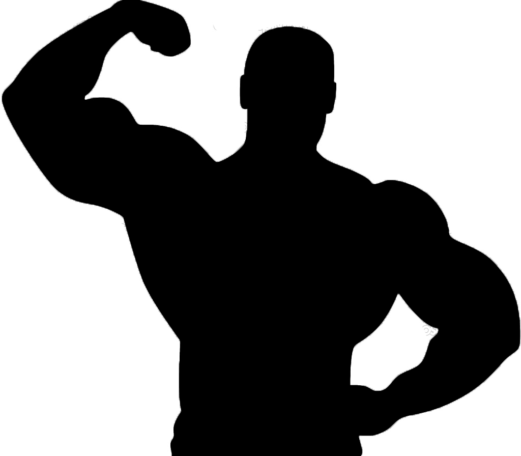Muscle clipart. Panda free images info