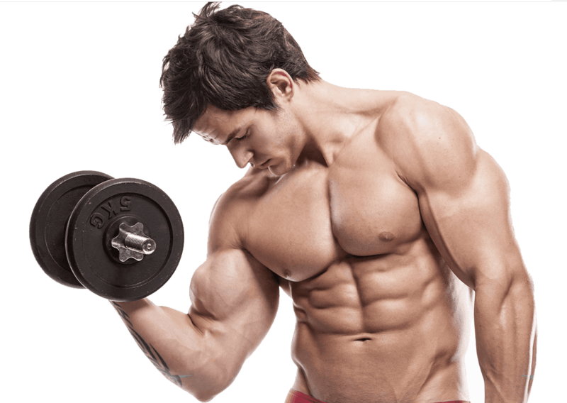 Muscle body png. Download free man dlpng