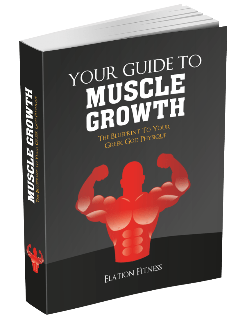 Muscles clipart physique. Your guide to muscle
