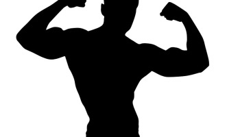 Muscles clipart physique. What are the nutritional