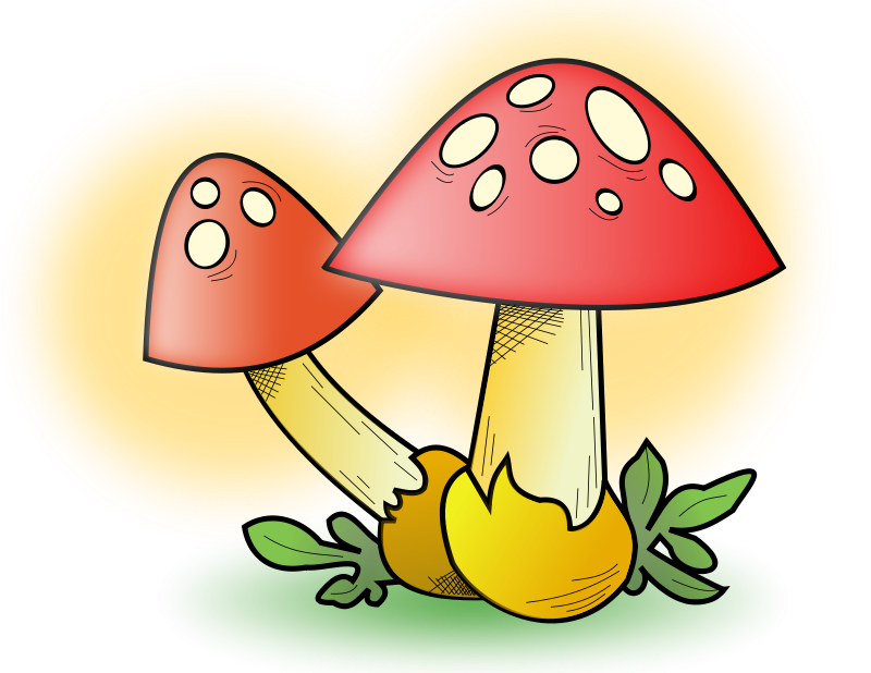 Mushroom clipart kid. Free toadstool pictures download