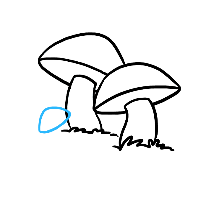 Fungus drawing flower. How to draw a