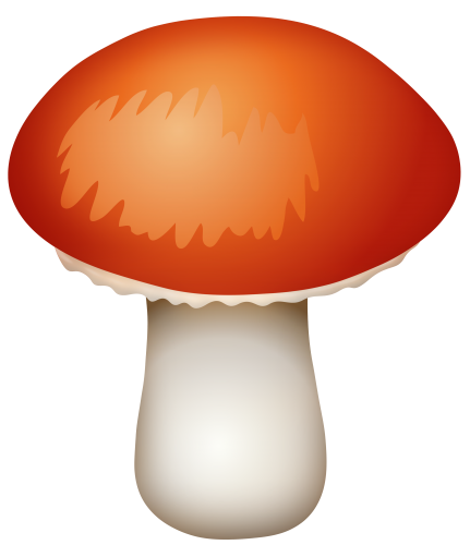 Mushroom clipart realistic. Red png best web