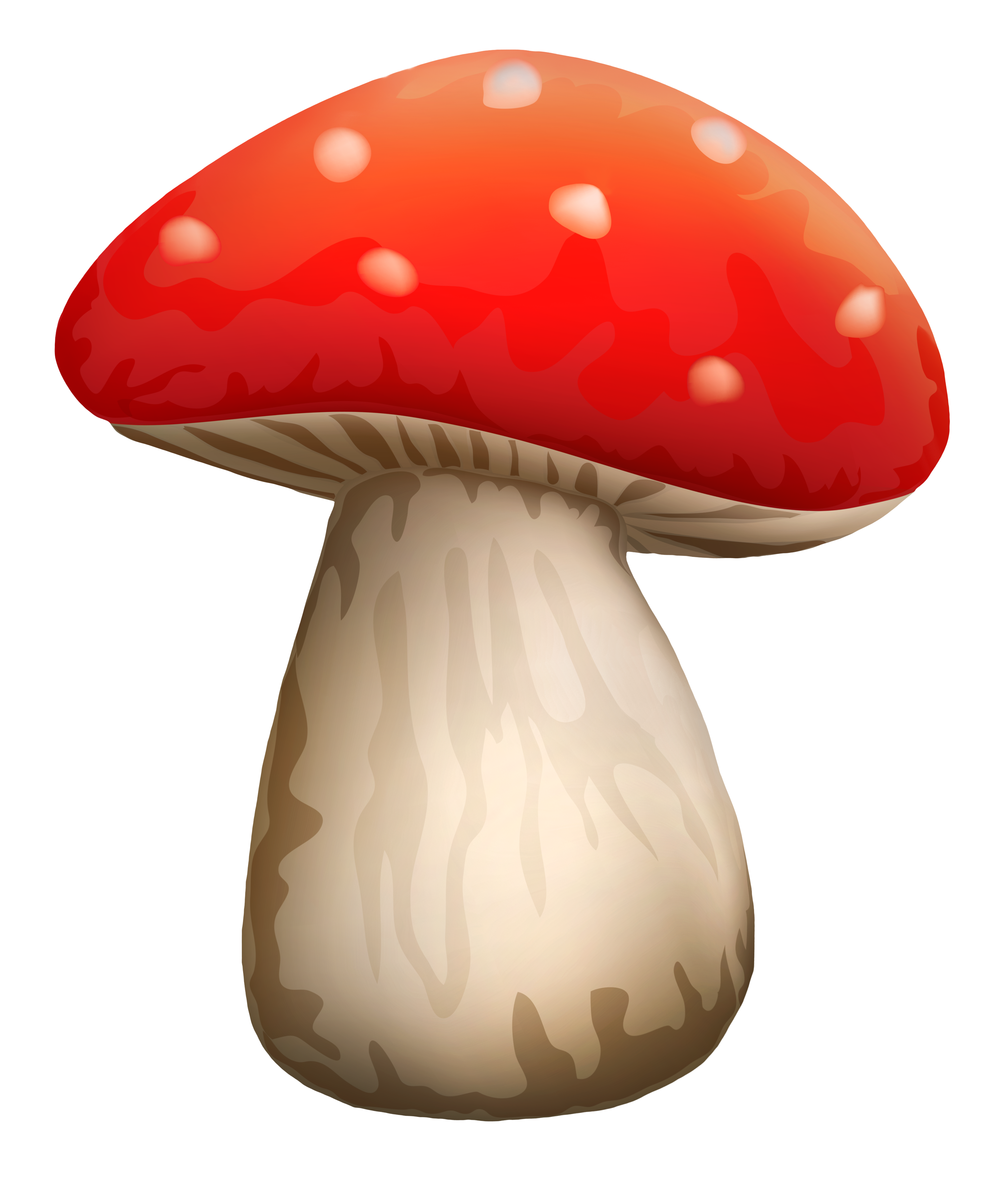 Red mushroom png. Poisonous with white dots
