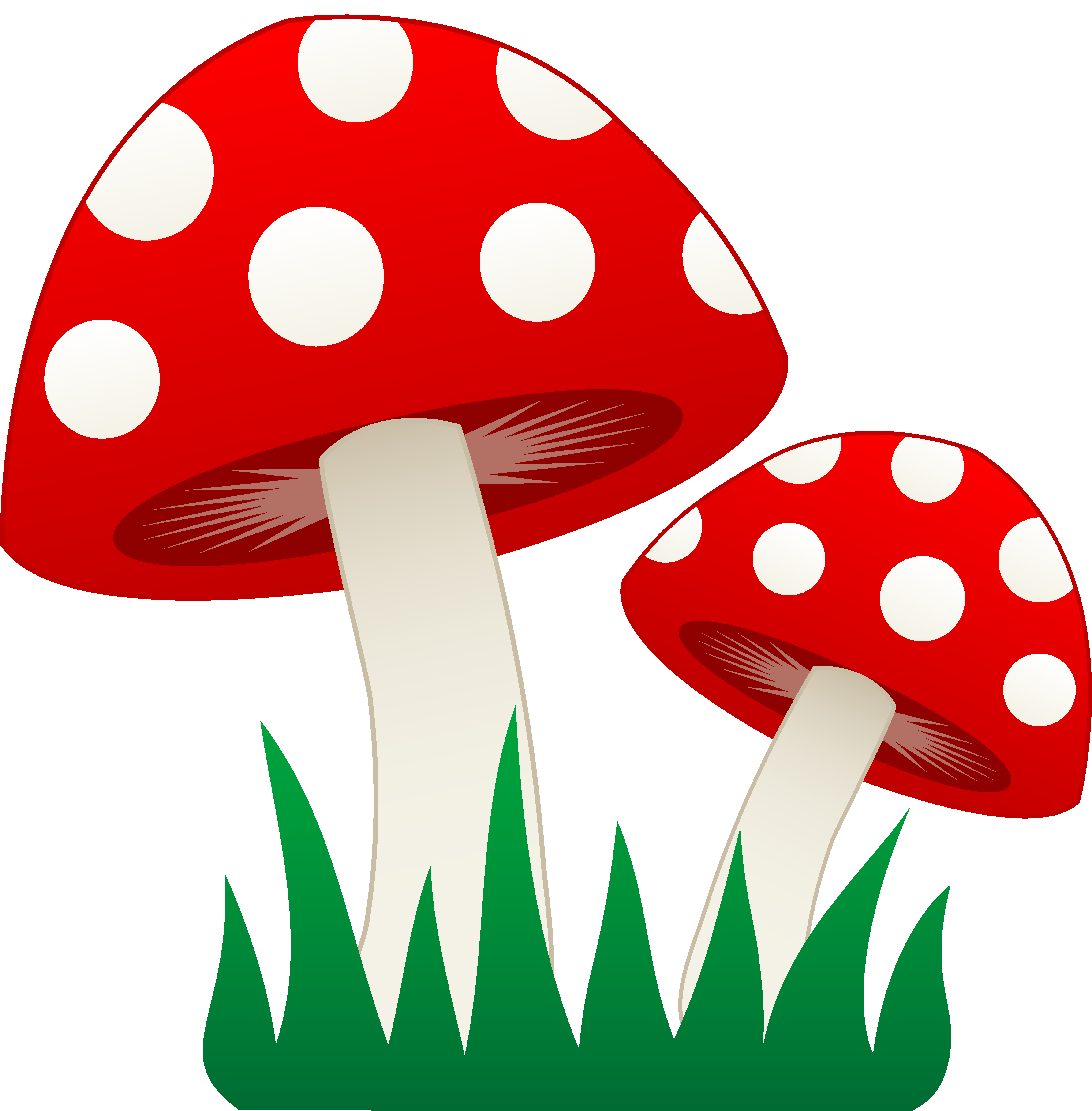 Mushrooms clipart image group. Drawing shrooms easy jpg freeuse