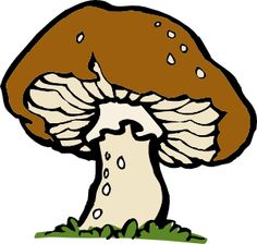 Mushrooms clipart trivia. A fairy on top