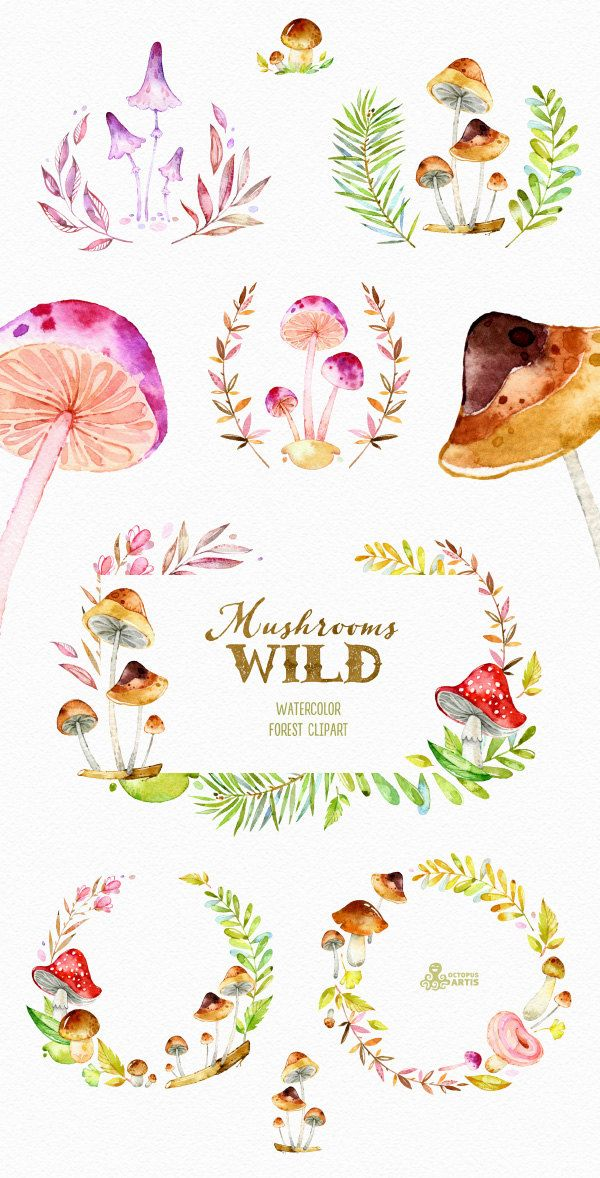 Woodland clipart wreath. Wild mushrooms watercolor forest