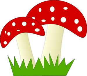 Mushrooms vector fungi. Red and white dotted