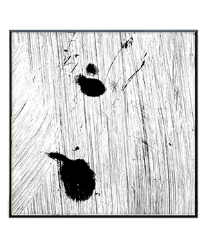 Muskrat drawing white. Square artworks wall art